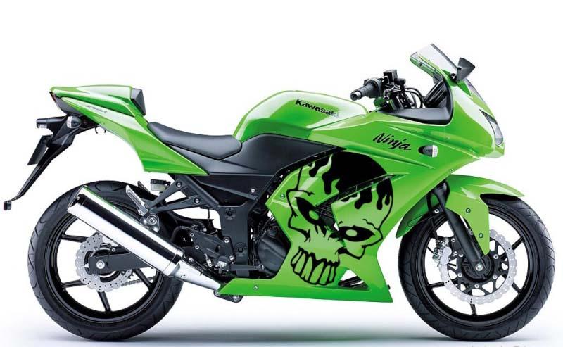 Kawasaki Ninja 250 Fairing Cutting Sticker Skull