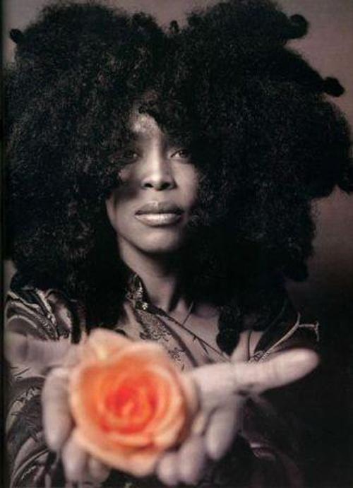 Brilliant Blog Do Elemento Erykah Badu E Lauryn Hill No Brasil Hairstyle Inspiration Daily Dogsangcom