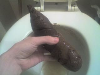 One type of giant turd
