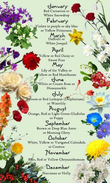 was excited to learn the official  quot birth month quot  flowers and am now    Month Of May Flower Tattoos