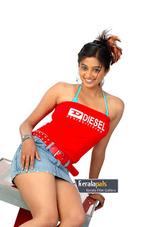 Priyamani – Doing Great In South Indian Movies