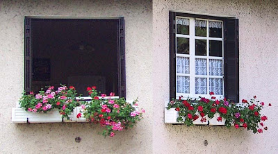 kitchen window box over sink lighting wcs both years we had geraniums in the boxes