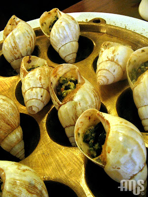 Escargot at Boka Buka by bayuamus