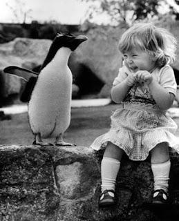 Suhderikkauksia Penguin-and-girl-baby