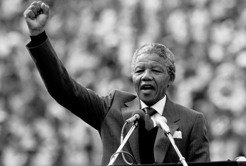 Nelson Mandela Rede