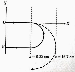 AP Physics Resources: AP Physics C Free Response Practice