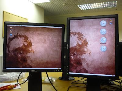 Setting Dual-Head Displays with Radeon HD 3650 in Ubuntu