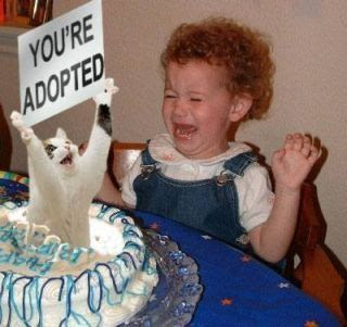 photo of a little girl crying and a cat jumping out of a b-day cake
