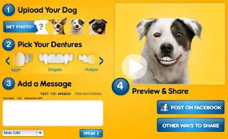 having fun with english denture your dog