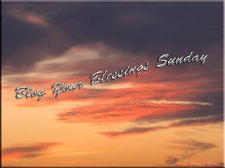 Blog Your Blessings Sunday
