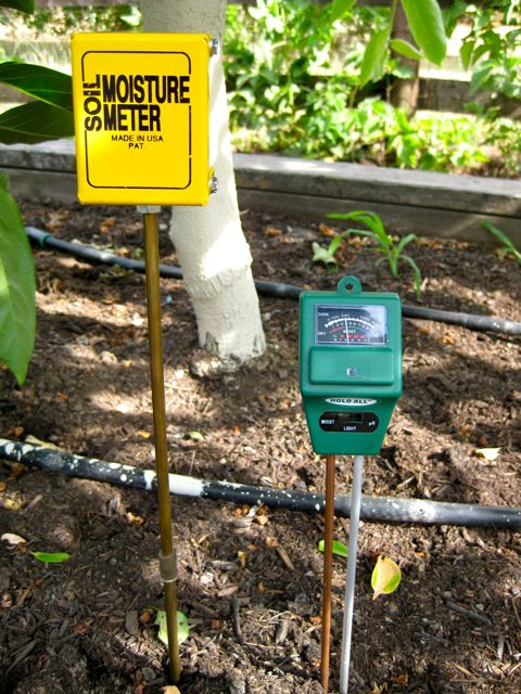 The Farmer Fred® Rant: Drip Irrigation: How Long Do I Water?