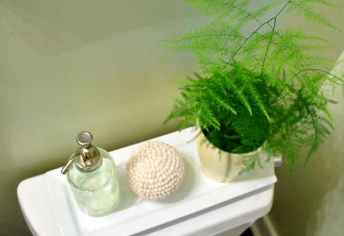 Feng shui decoracion con plantas un elemento valios simo for Macetas para interiores hogar