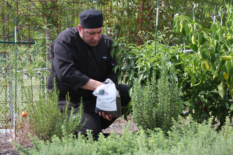 Chef Garden: Zero Waste In ACTION: Chef Gardens