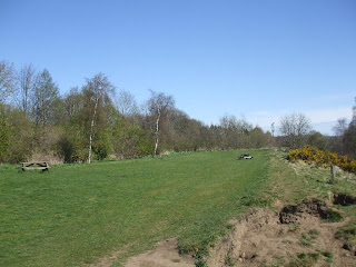 River Tyne: Newburn to Wylam