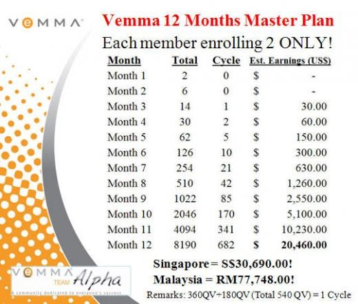 Online Vemma Business: How Much I Can Earn?