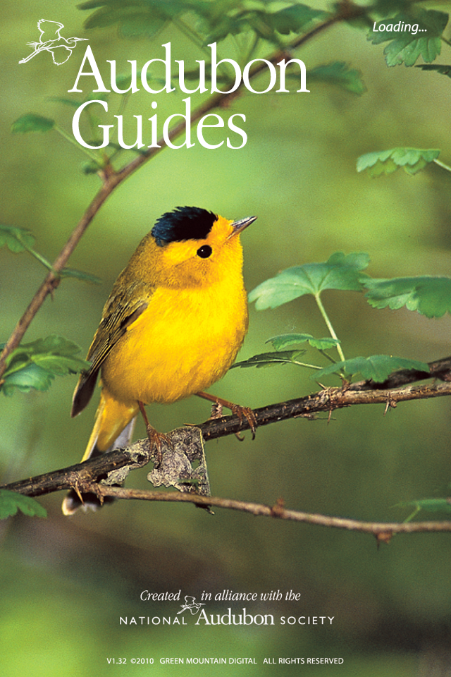 audubon field guide to north american birds