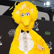 Big Bird turns 40
