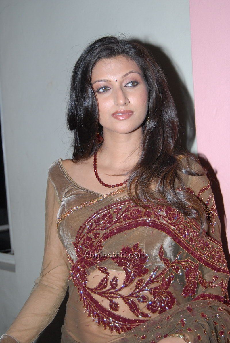 Indian Girl Wallpaper Sexy Girl Bikini New Hamsa Nandini Latest Hot Saree