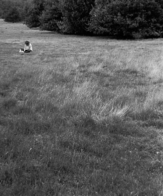 boy in a suffolk field ⓒ Cate McRae 2008; All Rights Reserved