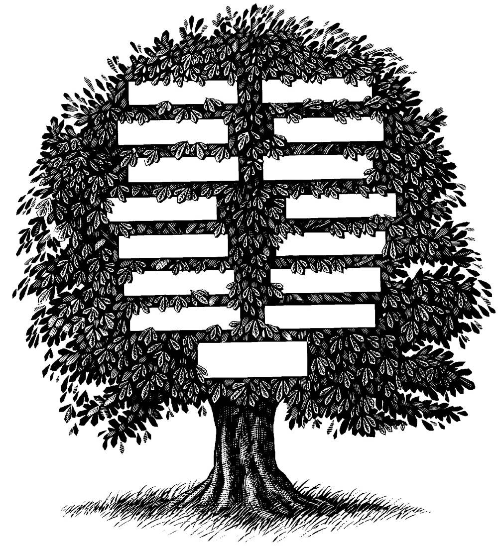 Holt-Merriwether-Gillespie Geneology: Family Tree
