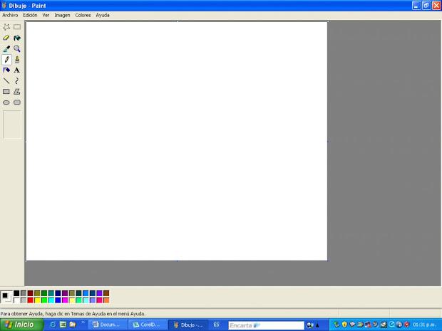 Windows Paint Program