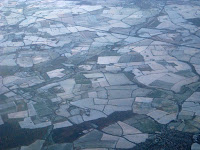 Frozen fields in England