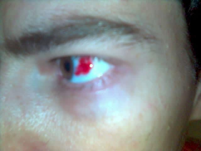 Sangue do meu sangue anabela moreira - 2 9
