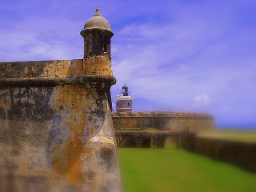 bizcocho puertorrique241o