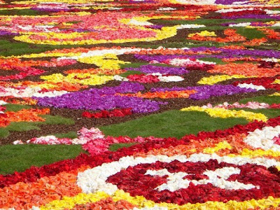 [Image: Flower_Carpet_08.jpg]