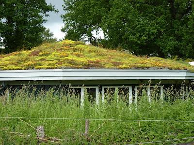 Hamburg, Naturschutzgebiet, Dach vom NABU Informationshaus