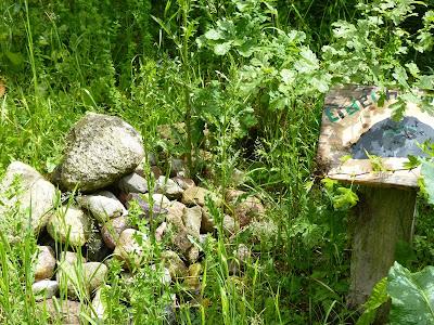 Duvenstedter Brook, Hamburg, Naturschutzgebiet, Eidechsenhügel