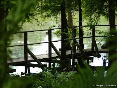 Brücke, Wanderweg, Botanischer Garten, Hamburg