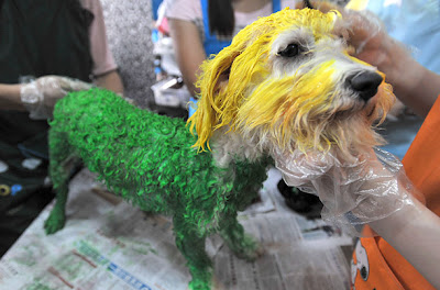 Colored Dogs in China