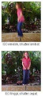 Mengenal ISO dan noise pada fotografi digital