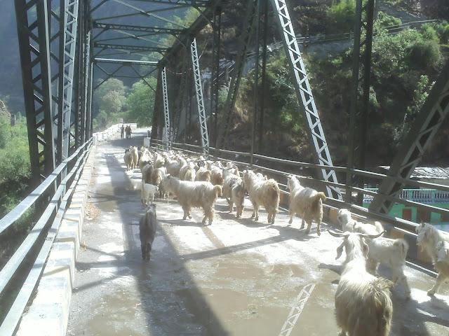 यमुनोत्री यात्रा- दिल्ली से हनुमानचट्टी