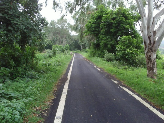 भीमबैठका- मानव का आरंभिक विकास स्थल