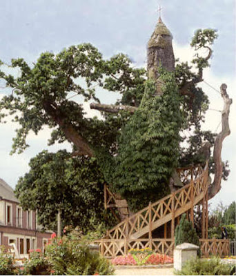 chapelle+arbre.jpg