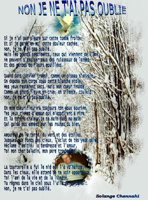Je Ne T Ai Pas Oubliée : oubliée, Travers, L'espace, Temps:, OUBLIE;, Poème, Protégé, édité, Recueils, Lactée,, Errances,, Passion