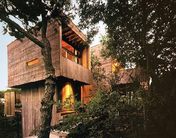 Arquitectura De Casas Moderna Cabana De Madera Entre Los Arboles - Cabaas-de-madera-en-arboles