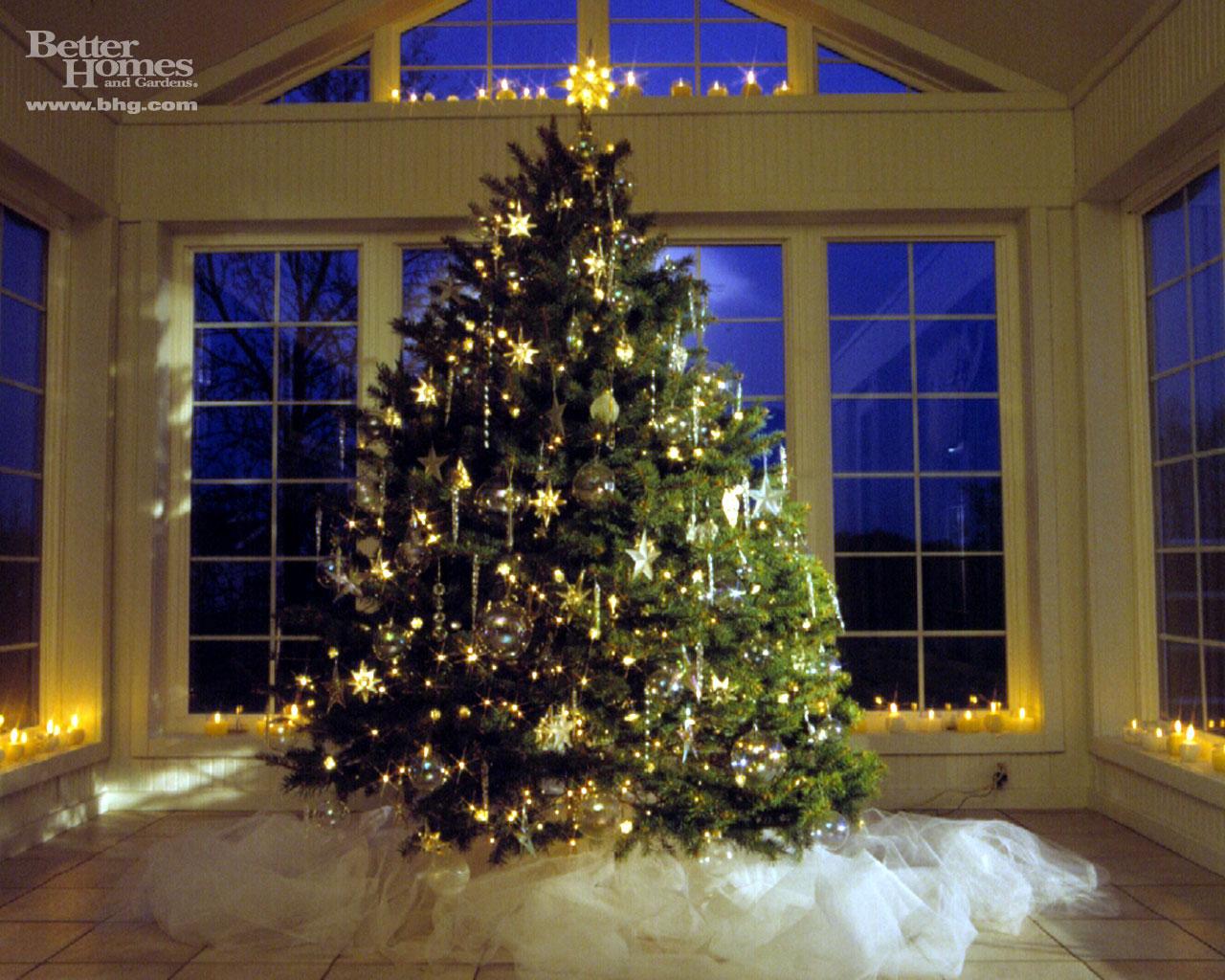 All Stuff 4 U: Christmas Tree Greeting Cards