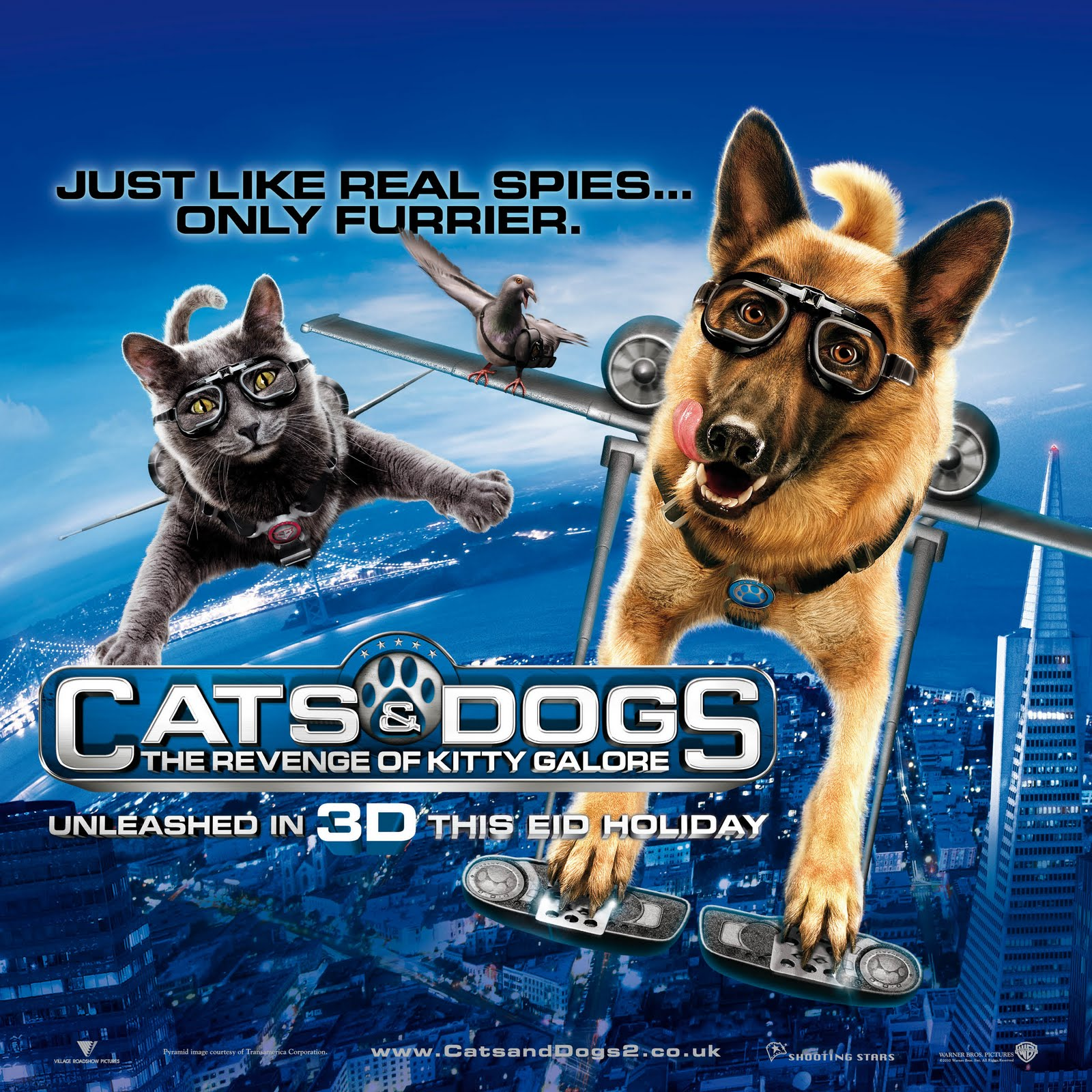Image Result For Can Dogs Catch