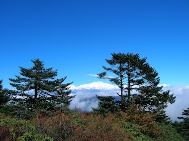 Himalayan Singalila Ridge Trek from Sandakphu to Phalut