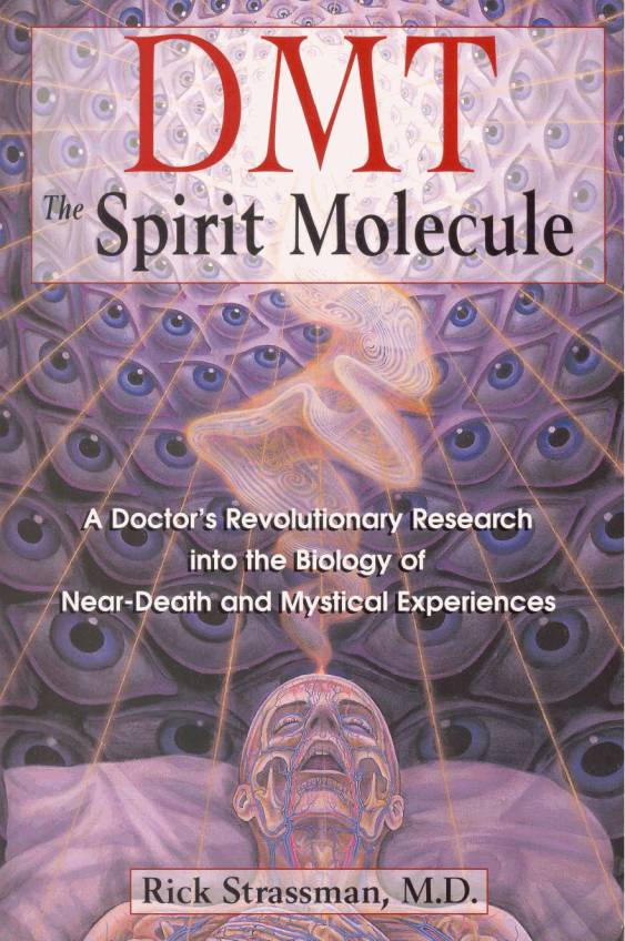 Rick Strassman, The Spirit Molecule, December 2000, Park Street Press
