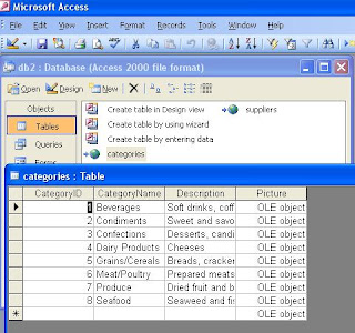 Using Microsoft Access Interface for MySQL Database-info