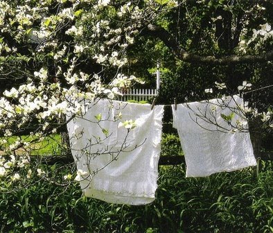Linens and Lace, Tricia Foley - http://www.linenandlavender.net/2009/07/there-is-nothing-so-lovely.html
