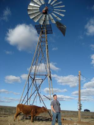 Resultado de imagem para old windmill that stood alongside