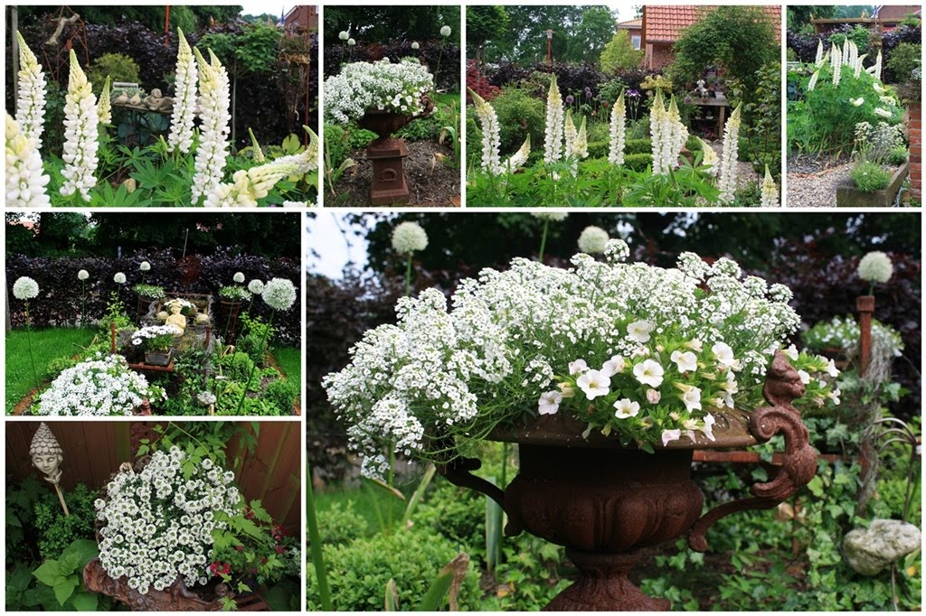 frisian garden sommer im garten. Black Bedroom Furniture Sets. Home Design Ideas