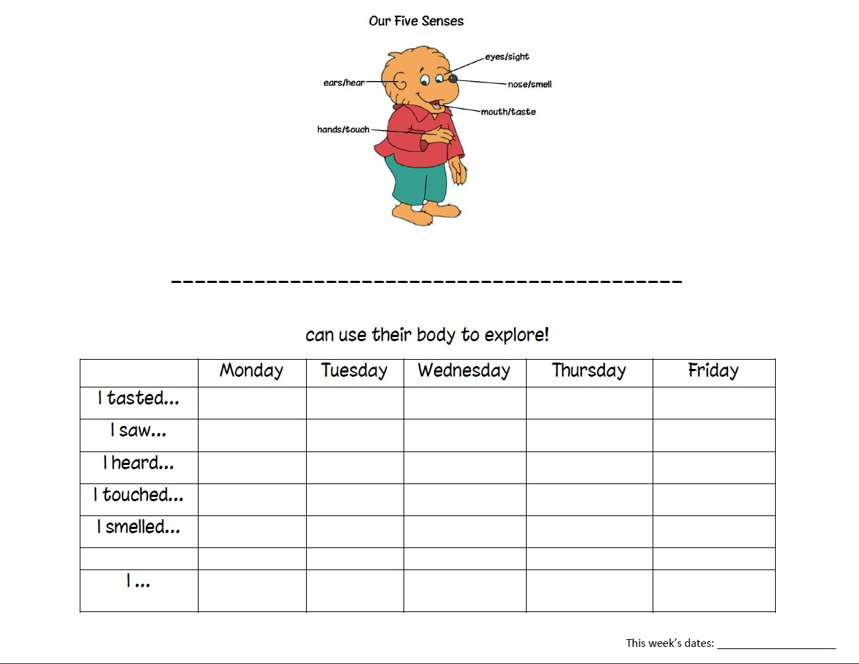 Five Sense Worksheet New 966 Five Senses Worksheet