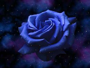 las flores mas bellas del mundo