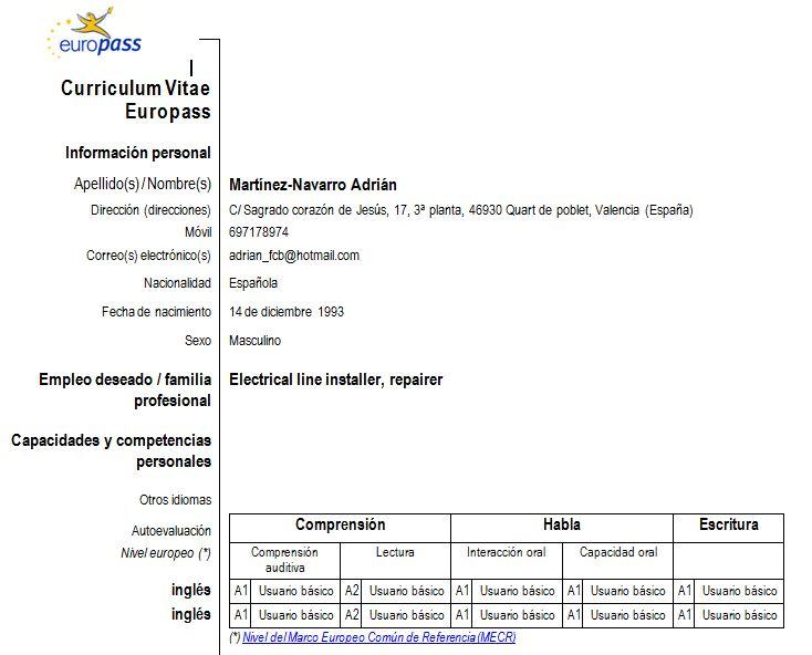 Curriculum Vitae Europass English Version | Resume Pdf Download